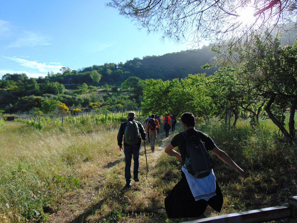 Group of friends with backpacks doing trekking excursion on mountain - Young tourists walking and exploring the nature - Trekker, hike and travel people concept