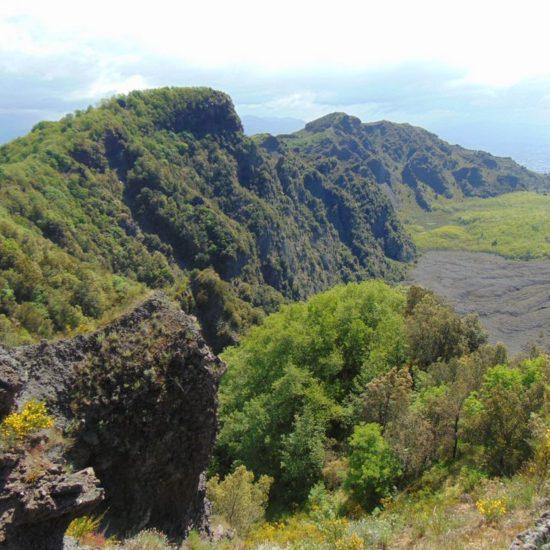 Vista del monte somma
